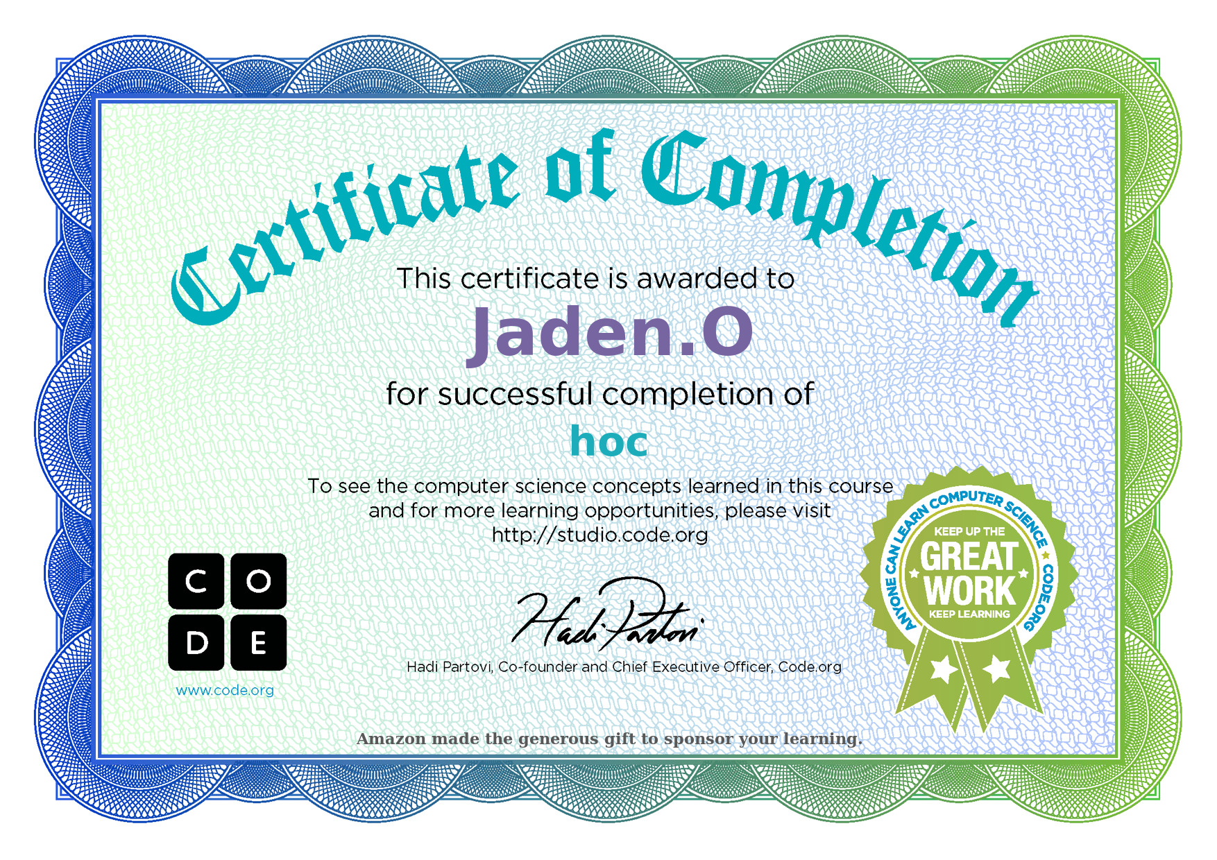 certificate coding elsa anna code course learning